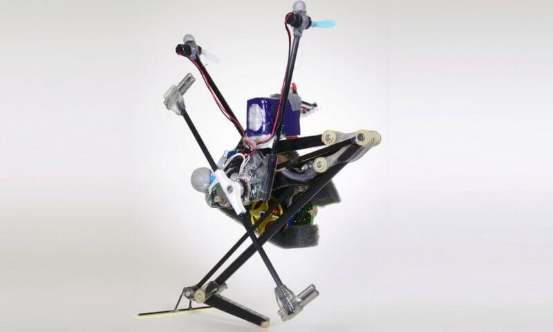 co potrafi skaczący robot salto?